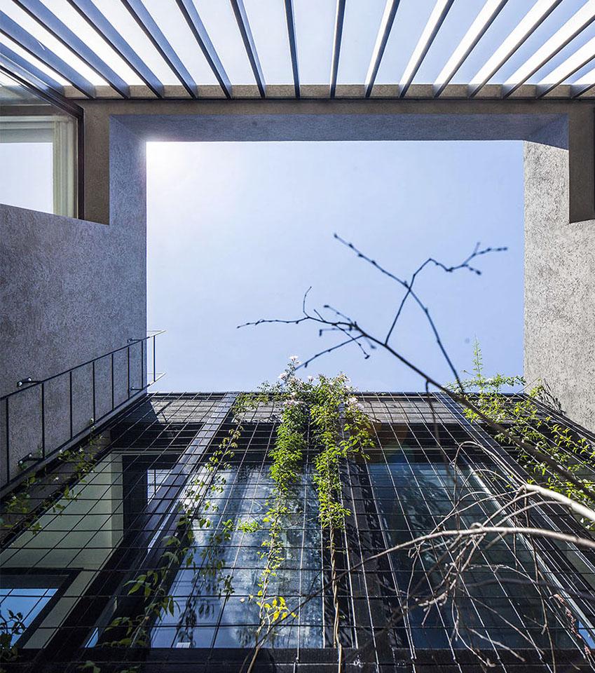 jardines interiores en viviendas, arquitectura contemporánea, arquitectura y paisaje