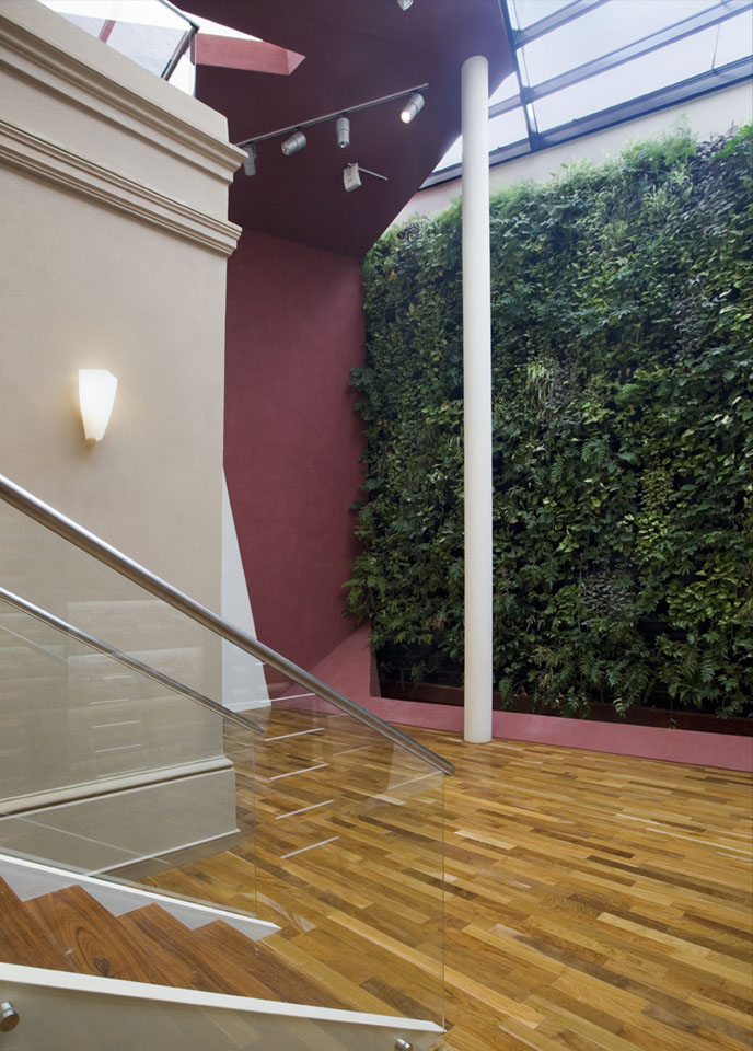 Jardines verticales en locales, iluminación natural cenital en locales, diseños modernos de locales